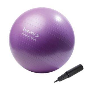 Fitnes lopta, ANTI-BURST, s ručnom pumpom, promjer 65 cm